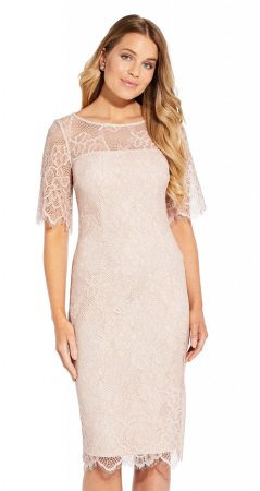 Maria lace sheath dress