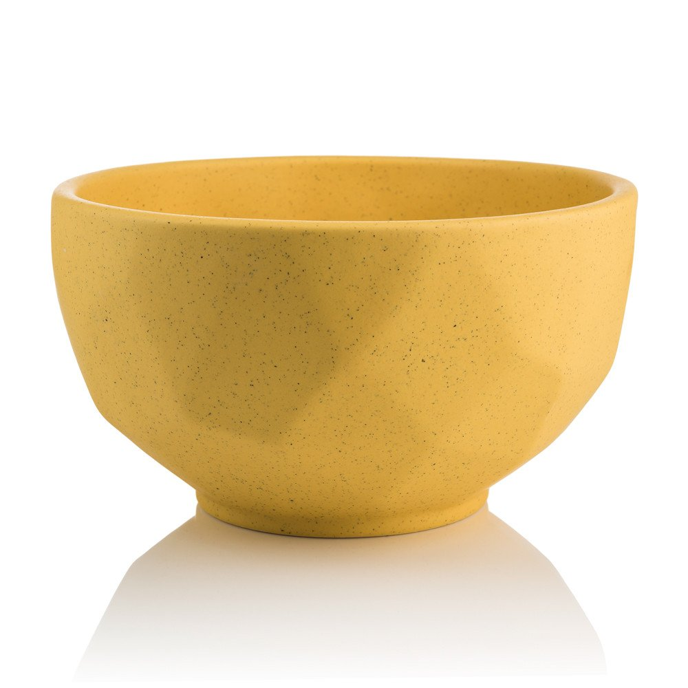 Bowl Prisma