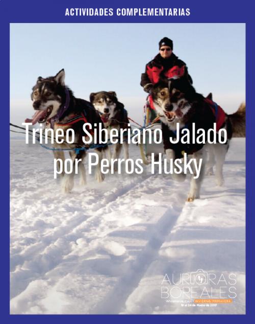 Trineo Siberiano Jalado por Perros Husky