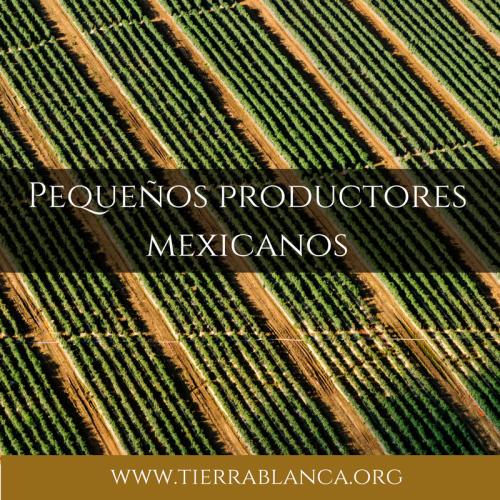 Pequeños Productores Mexicanos