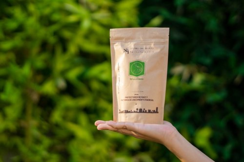 ReFuerza - Protector de raíz en plantas