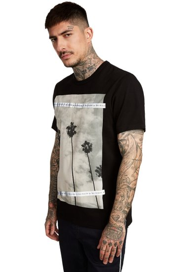 SS PALM TREE PHOTO PRINT TEE